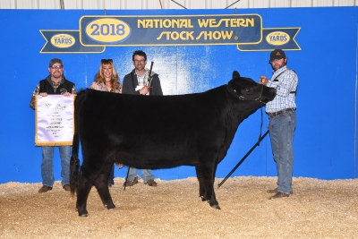 Reserve Grand Champion Percentage Female 2018, American Wagyu Association - National Western Stock Show